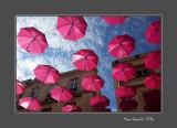 Umbrellas against cancer