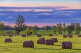 Early Morning Bales 35719-21