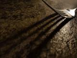 Fork Shadow 02043