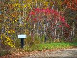 Roadside Mailbox DSCF10545