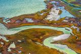 Wetlands 29926