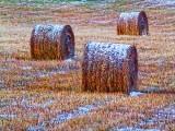 Frosty Bales 39688-9v2