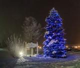 Holiday Lights 40489-97