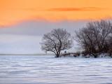 Winter Sunrise Fog 20131216