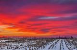Winter Sunrise 40976-7