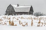 Barn In Snowstorm DSCF12371