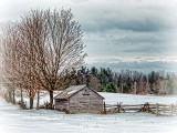 Winter Farmscape DSCF12462-4
