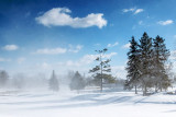 Blowing Snow DSCF12964