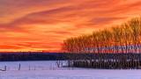 Rideau River Sunrise 41876-8