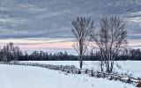 Daybreak Snowscape 20140203