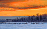 Irish Creek Sunrise 20140209