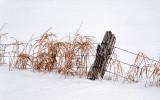 Deep In Snow 20140215