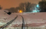 Tracks In The Snow 42559