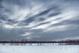 Daybreak Cloud 42822