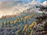 Smoky Mountains 6459