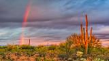 Sunrise Rainbow 76504