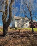 Fallow Heritage House Garden DSCF14535-7