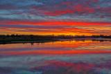Summer Sunrise 20140621