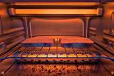 Toasty P1050898-9
