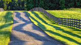 Horse Fence Shadows 20140710