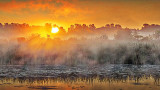 Misty Rideau Canal Sunrise 20140711