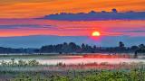 Sunrise Ground Fog 20140721