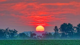 Country Sunrise 20140722