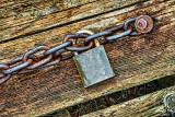 Lockdown P1080795