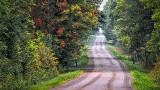 Quiet Back Road DSCF18292-4