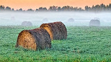 Bales In Misty Sunrise 20140917