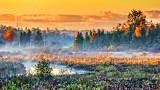 Autumn Wetlands At Sunrise P20140926