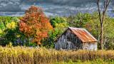 Little Autumn Barn 20140905