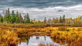 Autumn Brassils Creek 20141011