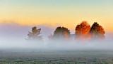 Farm In Sunrise Fog P1010083
