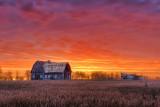 Barn At Sunrise P1020151-5