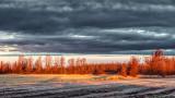 Landscape At Sunrise P1020718-20