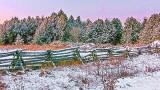 November Snowscape 20141118
