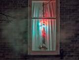 Window Ornament P1030840-2