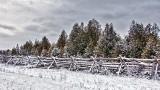 Snowy Split-rail Fence P1040080