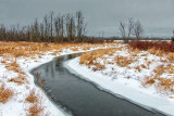 Wintry Otter Creek P1040109-11