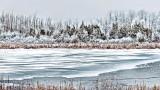 Frosty Wonderland P1040573