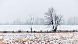 Winter Landscape 20141223