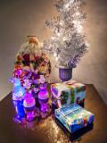 Christmas Display P1040741