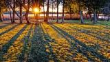 Sunrise Shadows 20141230