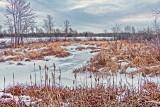 Winter Hutton Creek 20150107