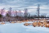 Winter Hutton Creek P1050546-8