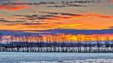 Winter Sunrise P1050643-5