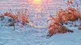 Lakeshore At Sunrise 20150120