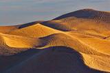 Imperial Sand Dunes 26618