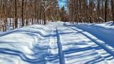 Winter Back Road P1110384-6